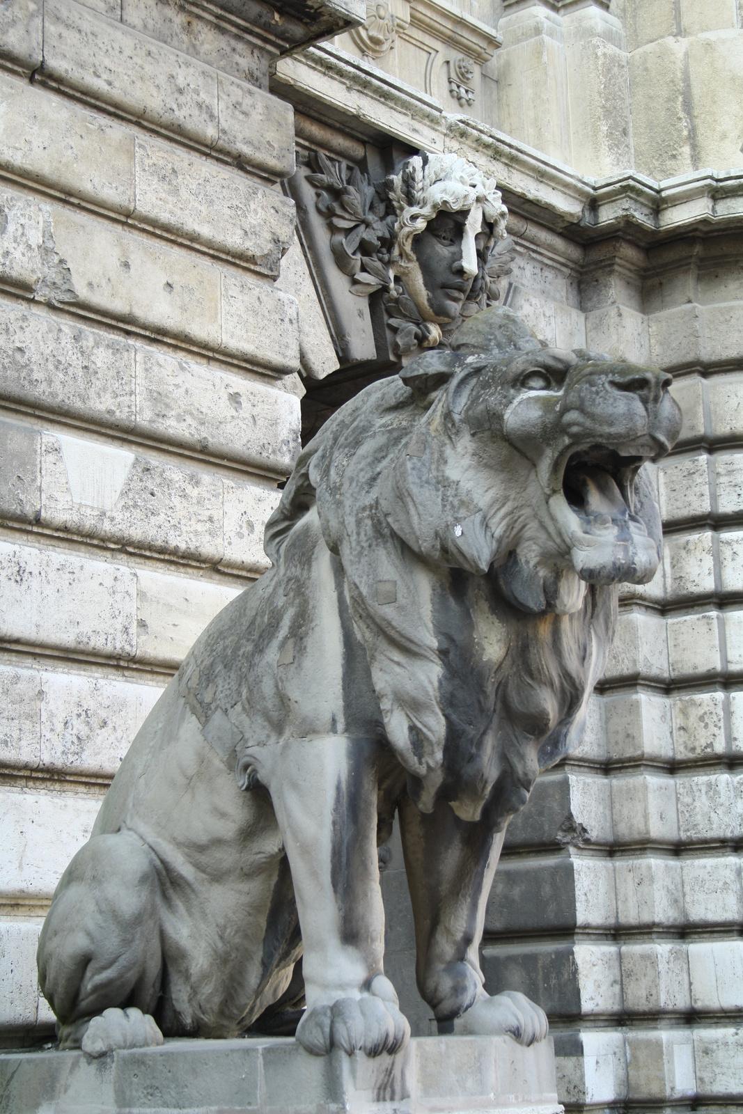 Fehér oroszlán(rokonok a Lánchídnál)
