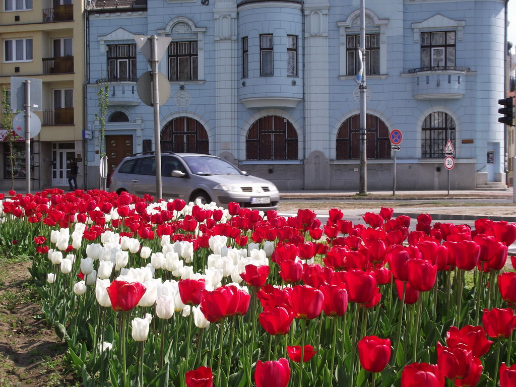 Virágos város