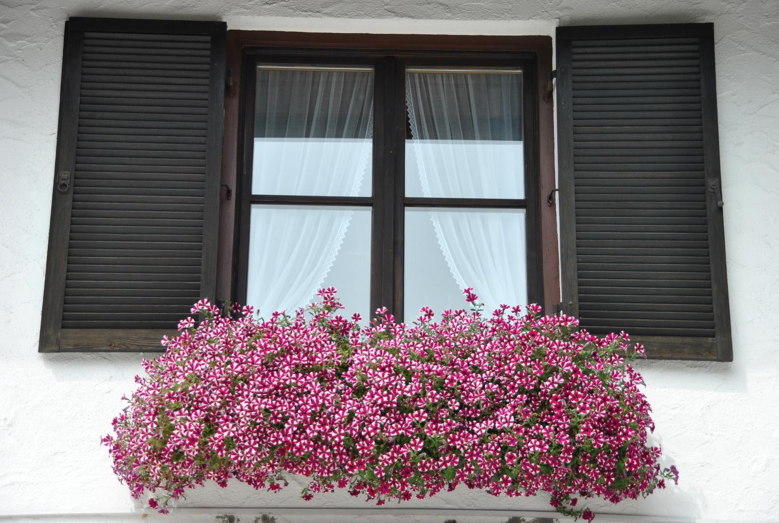 Virágos ablak